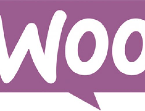 Woocommerce High Risk Payment Gateway
